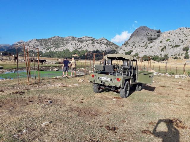 Jeep Excursie bij Ronda