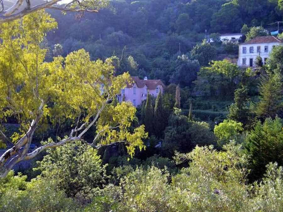Serra de Monchique, Algarve