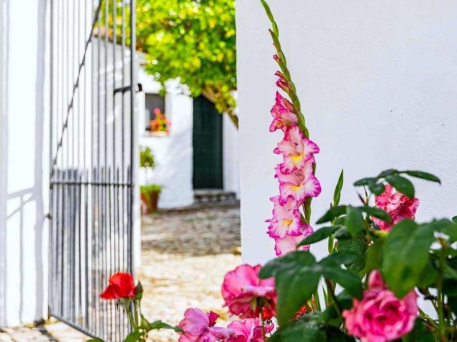 Hotelboerderij bij Ronda