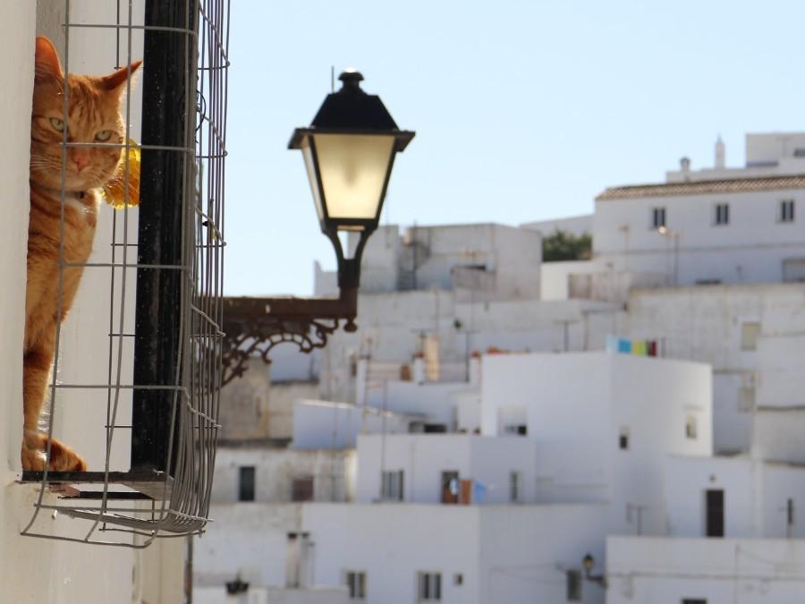 Vejer de la Frontera, Andalusië
