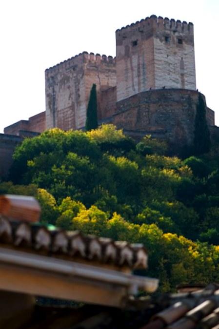 Zicht op het Alhambra