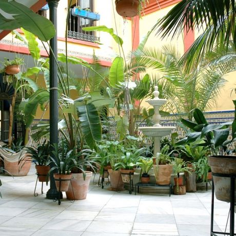 Patio van hotel Ferdinand Colon