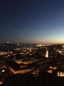 Zicht over Lissabon vanaf ons dakterras