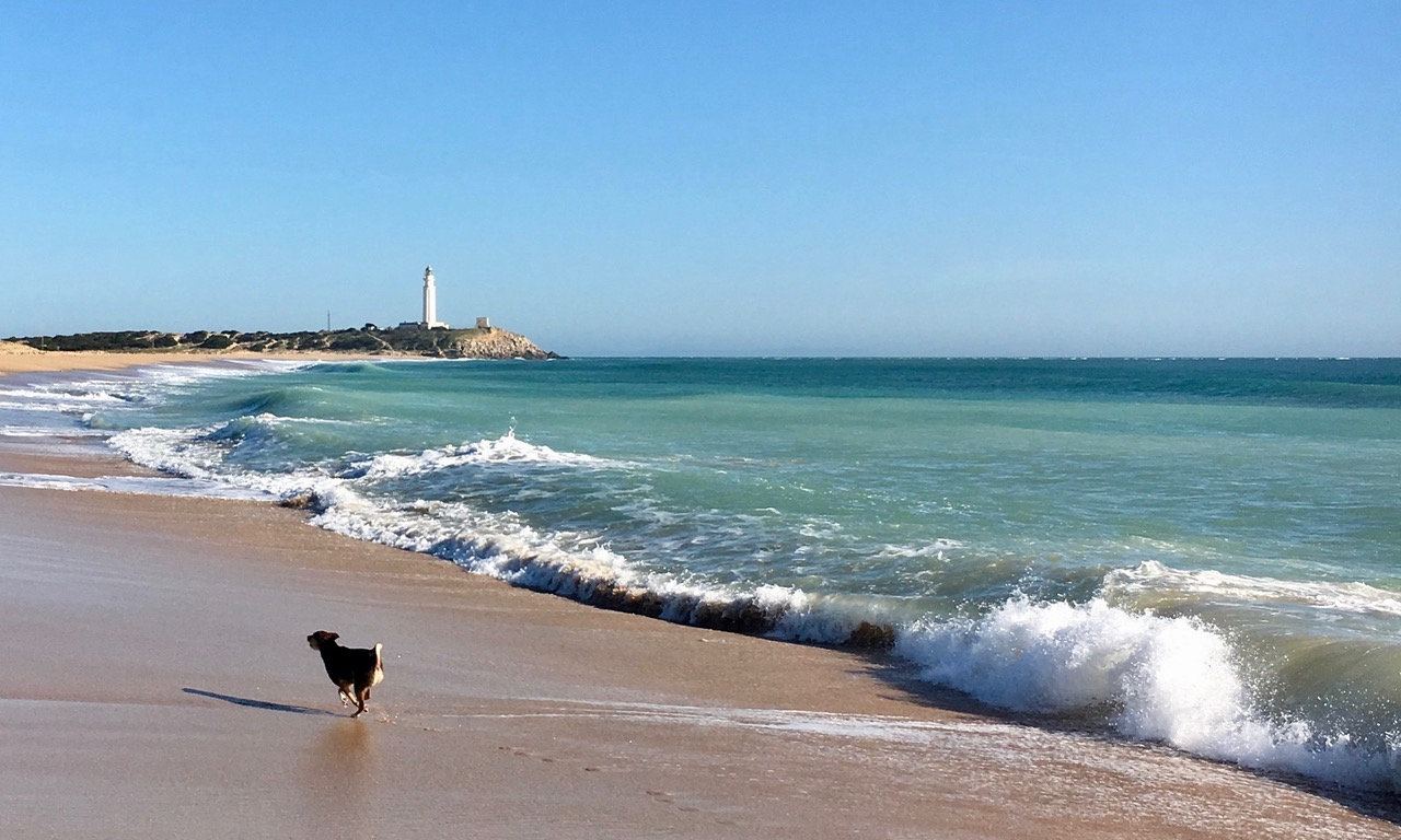 eindeloze stranden, hier bij Cabo Trafalgar