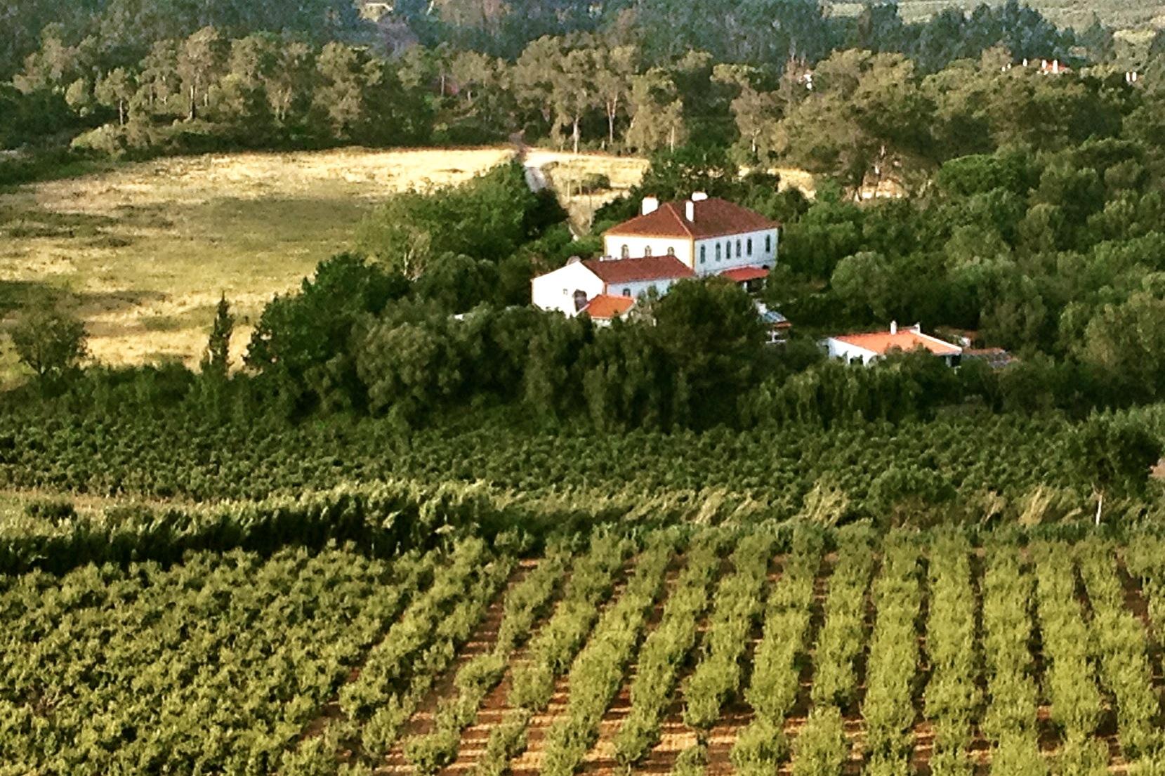 Verblijf op landgoed bij Óbidos