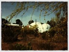 Dome La Vina