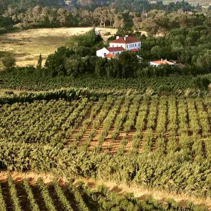 Landgoed bij Obidos