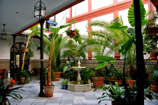 Patio hotel in Córdoba