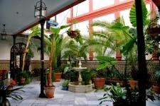 Patio hotel in Córdoba