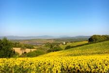 Voorjaar - rondreis - andalusie - natuur - Costadelaluz