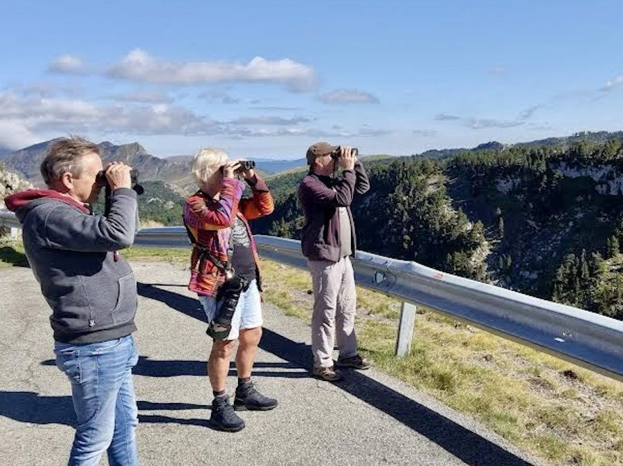 Birdwatchen  met lokale gids Gorka Gorospe