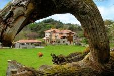 Traditionele rurale hoeve in Celorio