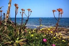 De kust bij Denia