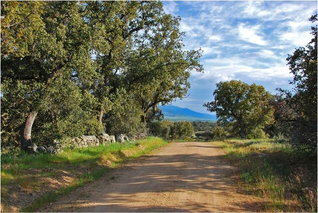 Wandelen met een Ezel in Spanje