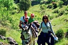 Wandelen met een ezel