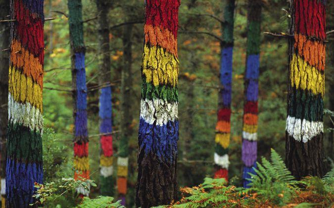 bosque-de-oma-rondreis-baskenland-stedentrip-bilbao-sansebastian