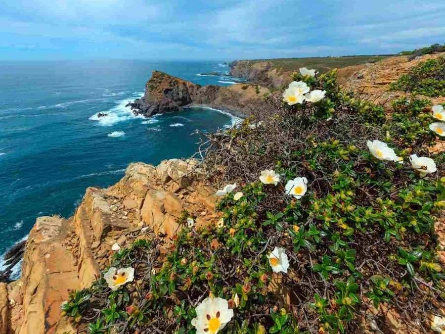 Costa Vicentina - Portugal