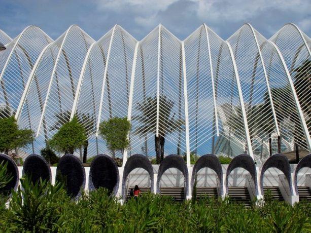 Valencia, Umbracle, Ciudad de las Artes y la Ciencias - architect Santiago Calatrava