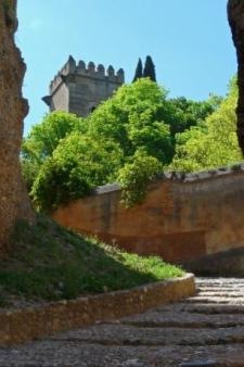 Granada - Op weg naar het Alhambra