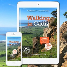 Our walkingguide
