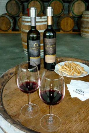 Wijnproeverij Torres Bodega El LLoar