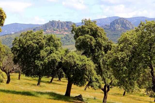 Extremadura, de Dehesa