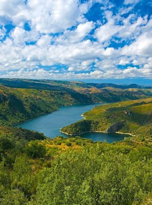 Ariibes del Duero