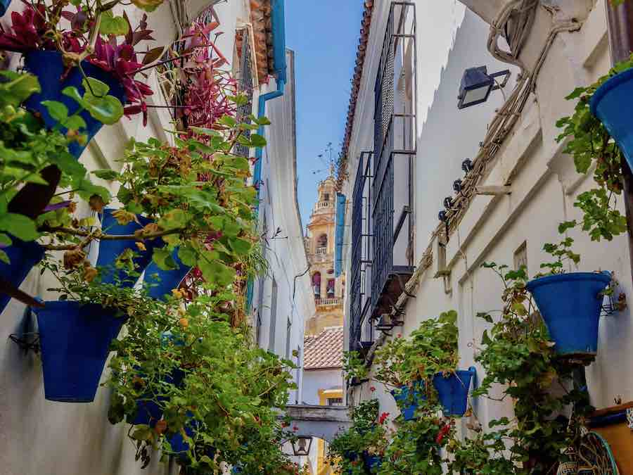 Cordoba, Calle de la Flores