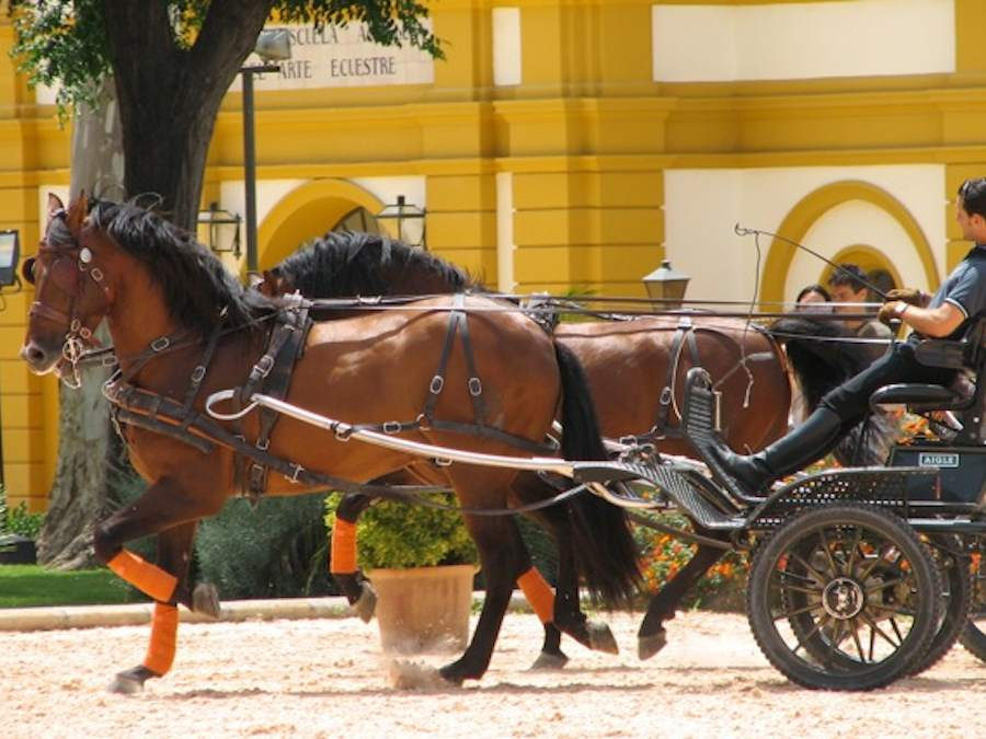 koetsjes Sevilla