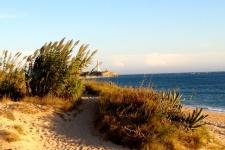 Het strand en de vuurtoren van Trafalgar