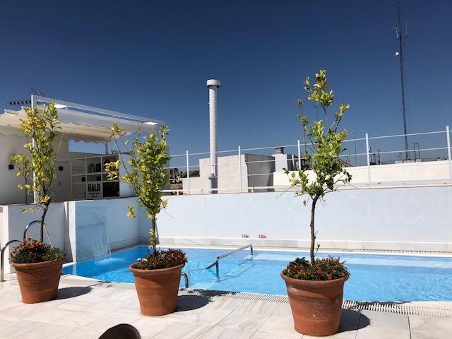 Zwembad op dak hotel Sevilla