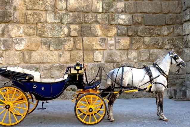 Sevilla, de koetsjes bij de Kathedraal