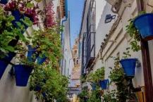 Calle de Flores Córdoba