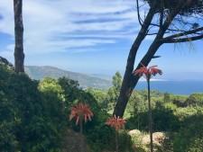 Costa de la Luz, zicht op Tarifa