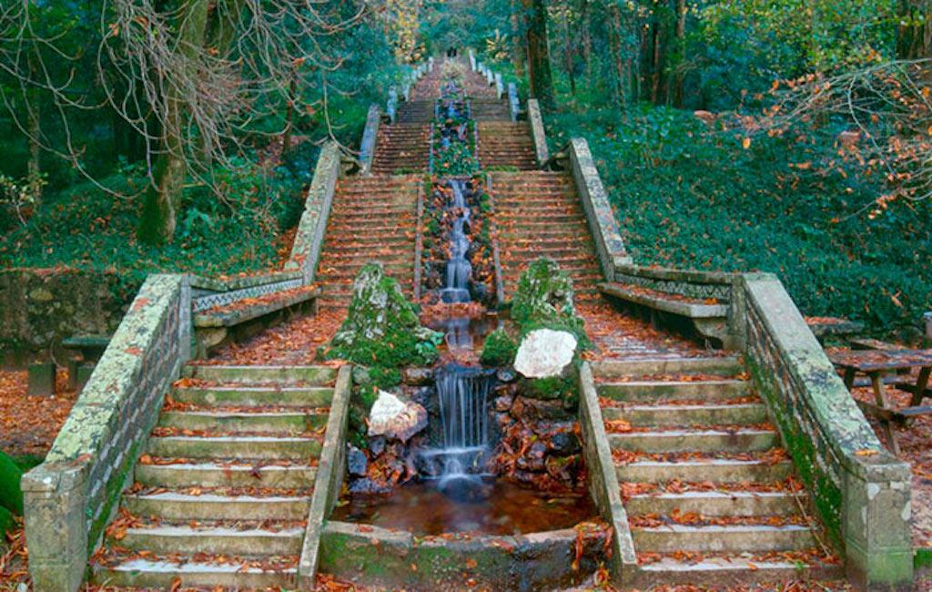 Het woud van Buçaco, Midden Portugal - top 10 bezienswaardigheden